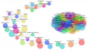 Co-occurrence netwerk plot populatie micro-organismen in slib rwzi