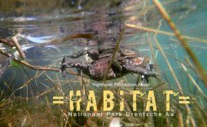 =HABITAT= Natuurfilm over de Drentsche Aa